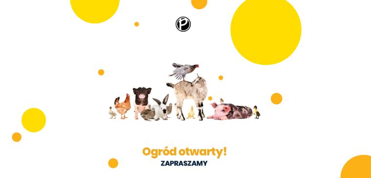mini zoo mostki - ogrod zoologiczny port 2000 - godzny otwarcia - cena - ziwerzęta